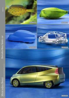 Name:  Biomimicry 3.jpg Views: 319 Size:  15.5 KB